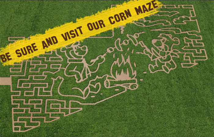 View our Corn Maze